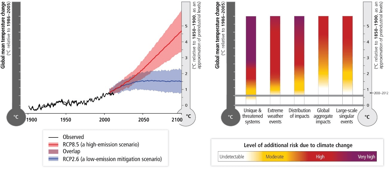 図1 世界全体で見た気候関連リスク